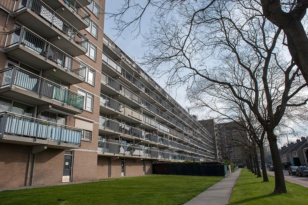 Bijna 500 woningen een plus voor Havensteder